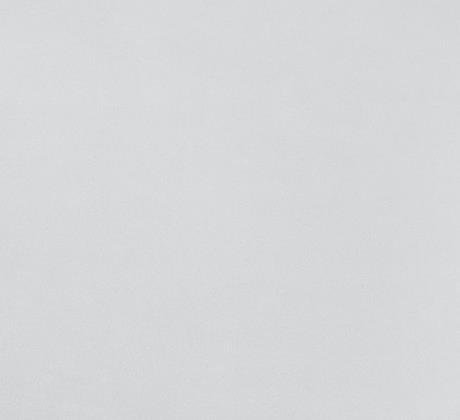 Revexpo gris clair 1893