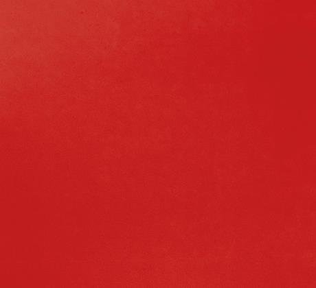 Revexpo rouge 1964