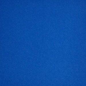 Revexpo bleuet 4895