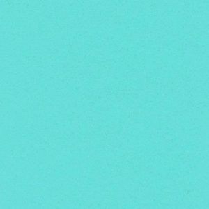 Salsa turquoise 1335