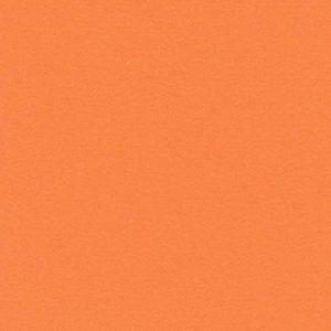Salsa orange 1370