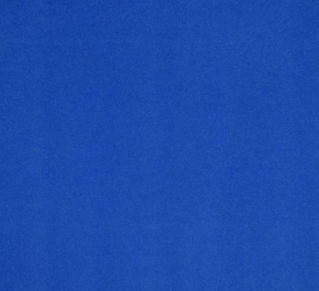 Salsa bleuet 4895